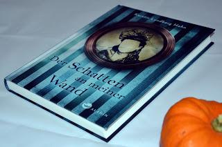 """""""Der Schatten an meiner Wand"""" von Kerstin Lundberg Hahn, Kinderbuch"""