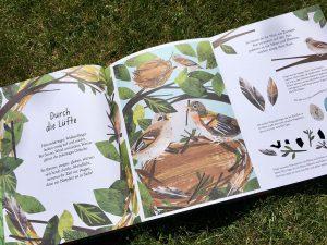 Reise durch die Natur - Ein Guckloch-Buch von Clover Robin und Libby Waldon