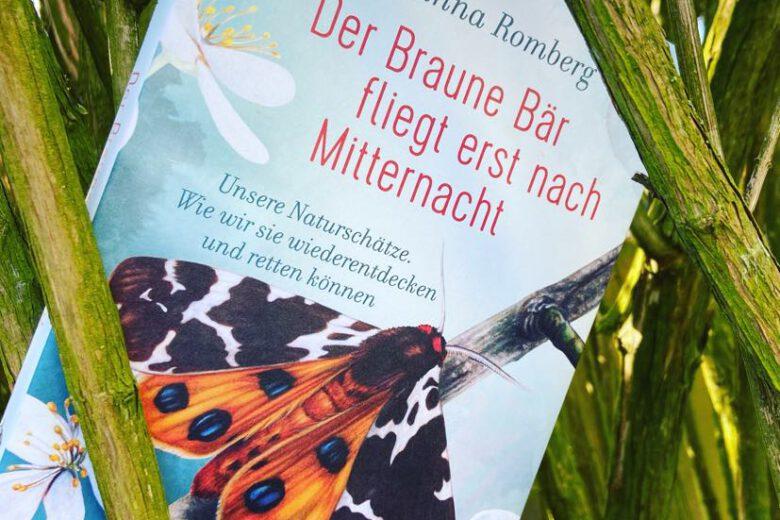 Der Braune Bär fliegt erst nach Mitternacht von Johanna Romberg, Sachbuch
